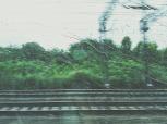 train-690494_1280