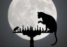 cat-1218093_1280-e1513357800261.jpg